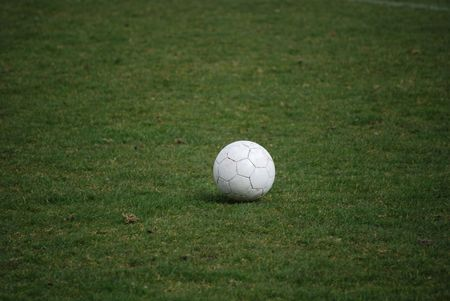 Soccer ball on the gras photo