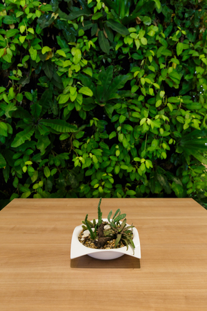 screen: Wood table with leaf screen Stock Photo