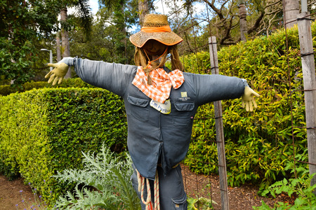 scare: Scare crow in Garden Stock Photo