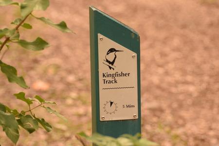 kingfisher: Kingfisher Track Sign