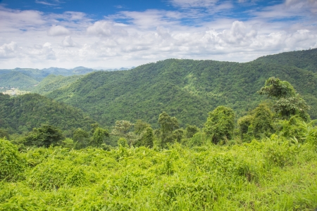 khao: Landscape  Khao Yai Nation Park of Thailand Tropical Rain Forests