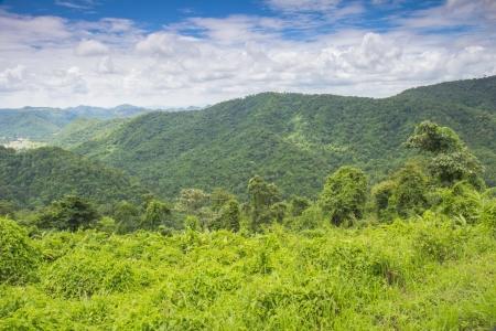 Landscape  Khao Yai Nation Park of Thailand Tropical Rain Forests