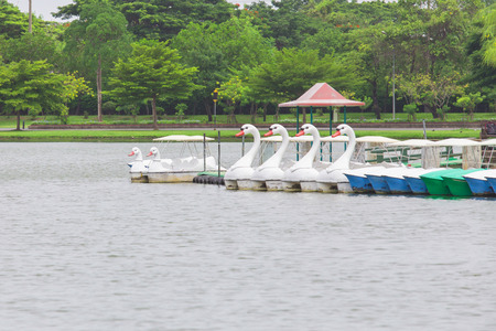 Duck boats in Garden public park photo