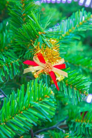 Christmas tree and Christmas decorations photo