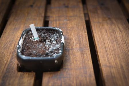 injurious: ashtrey with smoke at wood table