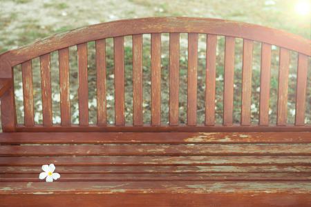 garden chair: a chair with flower in garden , vintage style picture