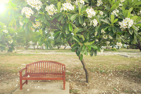 yard furniture: a chair with flower in garden , vintage style picture