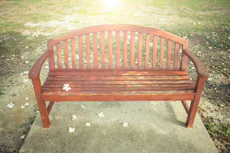 lawn chair: a chair with flower in garden , vintage style picture