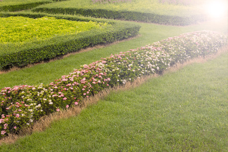 flowerbeds: Colourful Flowerbeds and Winding Grass Pathway in an Attractive English Formal Garden Stock Photo