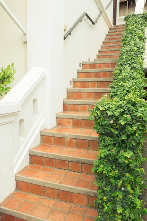 bannister: Staircase full of plants Stock Photo
