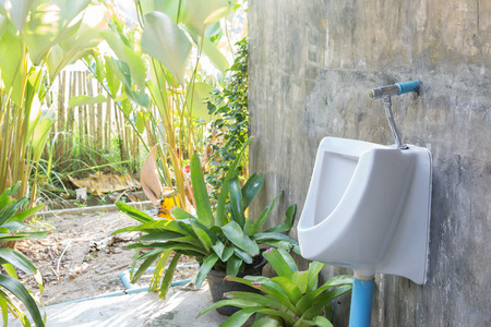 latrine: Urinal hanging on cement wall  in tree park