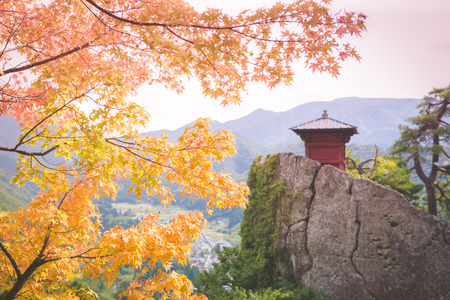 Colorful maple foreground with shrine temple background on cliff in Yamadera Japan , sofe skin effect image