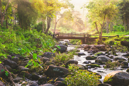 Beautiful small waterfall in deep forest Thailand with sunlight in the morning