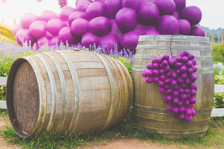 Wine barrel and grapes with vineyard on background Stock Photo