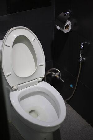 Toilet seat decoration in bathroom interior Archivio Fotografico