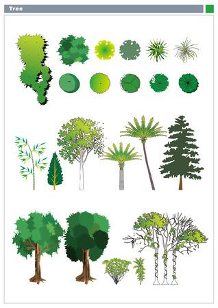 Various plants Vector