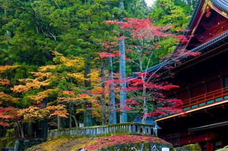 Autumn day in the Japan photo