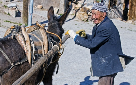turkish man: BEYPAZARY , TURKEY  - MAY 12 2008 - Old Turkish man working with his donkey
