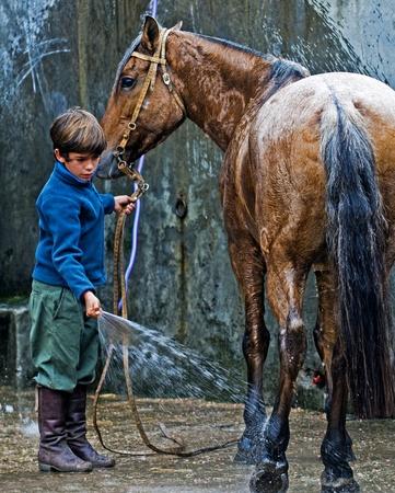 southamerica: MONTEVIDEO , URUGUAY  - APRIL 11 2009 :  participant child wash his horse  in  Gauchos show
