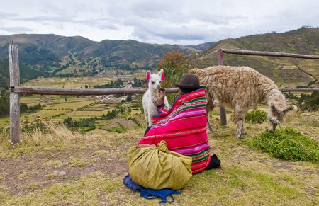 textille: SACRED VALLEY,  PERU - MAY 27 : Unidentified Peruvian woman in traditional colorful clothes seat with here alpacas near a village in the sacred valley , Peru on May 27 2011 Editorial