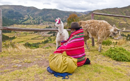 SACRED VALLEY,  PERU - MAY 27 : Unidentified Peruvian woman in traditional colorful clothes seat with here alpacas near a village in the sacred valley , Peru on May 27 2011 Stock Photo - 10592018