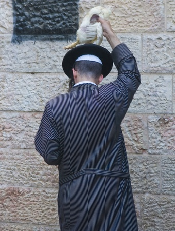 exprassion: JERUSALEM - OCT 06 : An ultra Orthodox Jewish man waves a chicken over his head during  the Kapparot ceremony held in Jerusalem Israel on October 06 2011