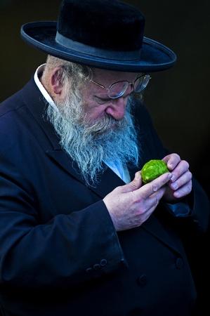 JERUSALEM - OCTOBER 10 2011 : An ultra-orthodox Jewish man inspects an Etrog Stock Photo - 10839153
