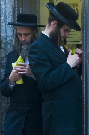 JERUSALEM - OCTOBER 10 2011 : An ultra-orthodox Jewish men inspects an Etrog Stock Photo - 10839131
