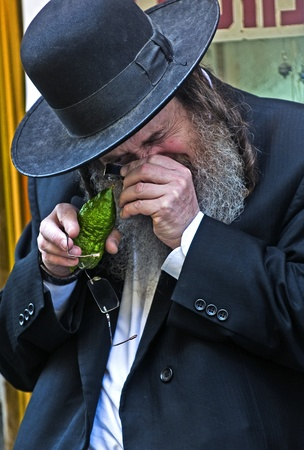 JERUSALEM - OCTOBER 10 2011 : An ultra-orthodox Jewish man inspects an Etrog Stock Photo - 10839152