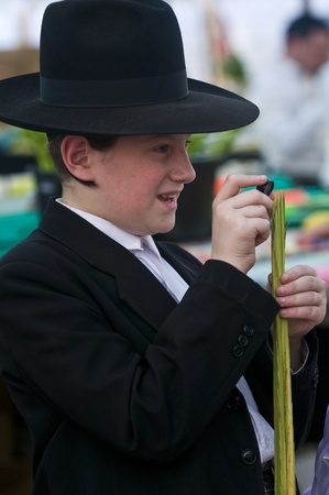 raligion: JERUSALEM - OCTOBER 10 2011 : An ultra-orthodox Jewish young man inspects a Lulav