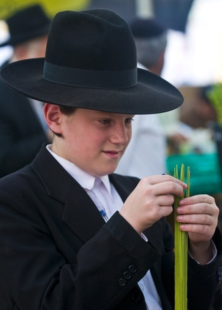 JERUSALEM - OCTOBER 10 2011 : An ultra-orthodox Jewish young man inspects a Lulav Stock Photo - 10839124