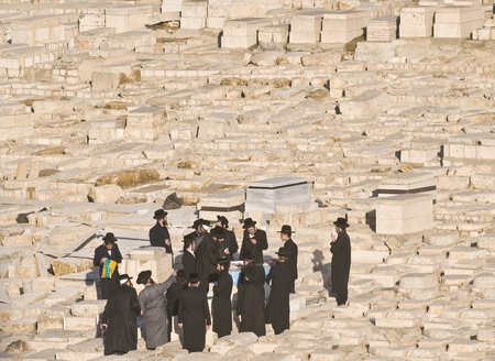 mount of olives: JERUSALEM - FEB 05 : Ultra Orthodox jews praying in the cemetery  on the Mount Olives in Jerusalem Israel on February 05 2012