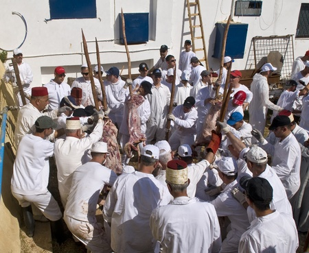 NABLUS , PALESTINIAN TERRITORY - MAY 04 : Members of the ancient Samaritan community during the traditional Passover sacrifice in Mount Gerizim near the west bank city of Nablus on May 04 2012