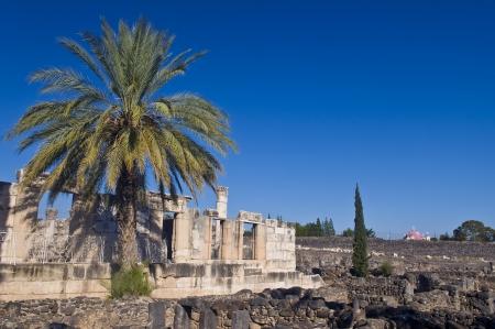 basillica: Ruins of the synagogue of Capernaum , Israel