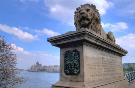 basillica: A lion statue of the chain bridge and the Hungarian parlament