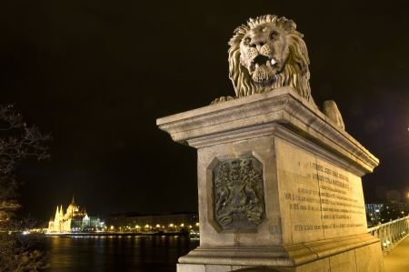 basillica: A lion statue of the chain bridge and the Hungarian parlament at night