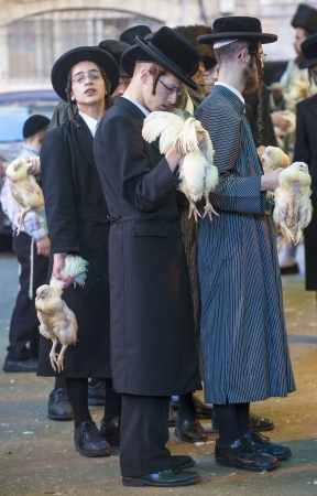 exprassion: JERUSALEM - SEP 25 : An ultra Orthodox Jewish men holds chickens during the Kaparot ceremony held in Jerusalem Israel in September 25 2012