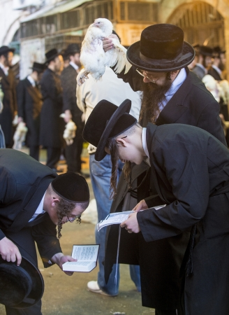 kippa: JERUSALEM - SEP 25 : An ultra Orthodox Jewish men prays with a chicken during the Kaparot ceremony held in Jerusalem Israel in September 25 2012