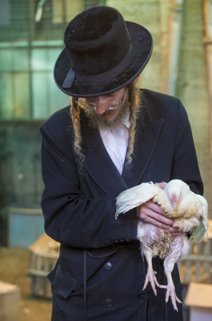 exprassion: JERUSALEM - SEP 25 : An ultra Orthodox Jewish man holds chicken during the Kaparot ceremony held in Jerusalem Israel in September 25 2012