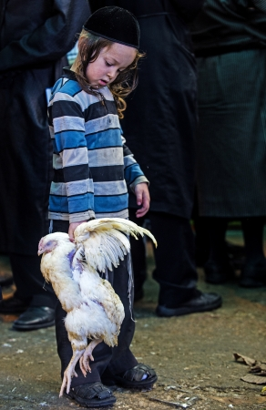 exprassion: JERUSALEM - SEP 25 : An ultra Orthodox Jewish child holds chicken during the Kaparot ceremony held in Jerusalem Israel in September 25 2012  Editorial