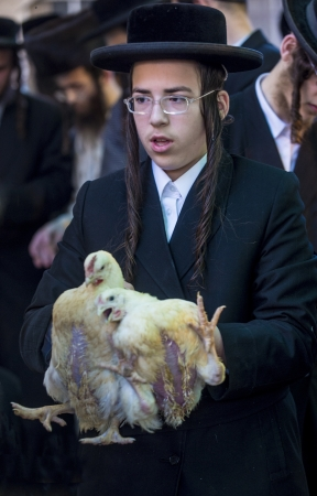JERUSALEM - SEP 25 : An ultra Orthodox Jewish man holds chickens during the Kaparot ceremony held in Jerusalem Israel in September 25 2012 Stock Photo - 15452916