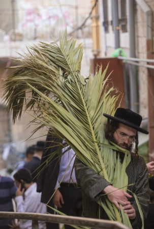 raligion: JERUSALEM - SEP 28 : Orthodox Jewish man carrying palm branches for building Sukkah in Jerusalem Israel on September 28 2012