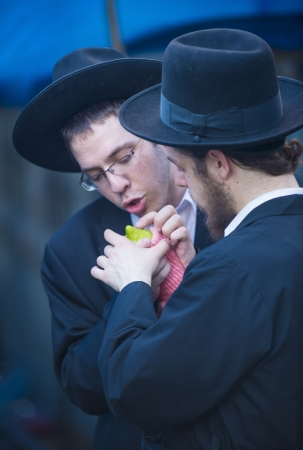 JERUSALEM - SEP 28 : An Orthodox Jewish men inspects an Etrog in the Four spesies market in Jerusalem Israel on September 28 2012 , Etrog is one of the Four spesies used during the celebration of Sukot Stock Photo - 15621182