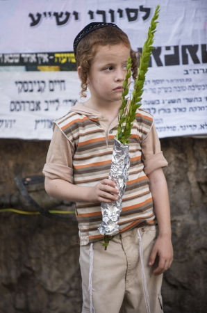raligion: JERUSALEM - SEP 28 : An Orthodox Jewish child holds an Hadas branch in the Four spesies market in Jerusalem Israel on September 28 2012 , Hadas is one of the Four spesies used during the celebration of Sukot
