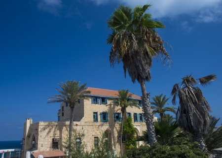 A house and palm trees in historic Jaffa , Israel Stock Photo - 15621174