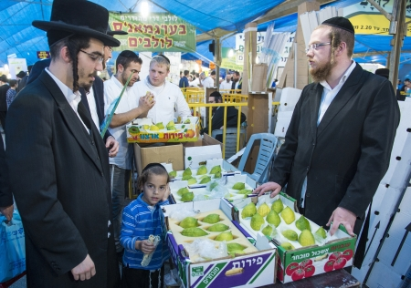 raligion: JERUSALEM - SEP 28 : An ultra-orthodox man selling an Etrog in the Four spesies market in Jerusalem Israel on September 28 2012 , Etrog is one of the Four spesies used during the celebration of Sukot
