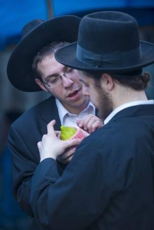 raligion: JERUSALEM - SEP 28 : An Orthodox Jewish men inspects an Etrog in the Four spesies market in Jerusalem Israel on September 28 2012 , Etrog is one of the Four spesies used during the celebration of Sukot Editorial