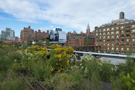 manhattans: NEW YORK CITY - JUL 22 : High Line Park in NYC on July 22th, 2012. The High Line is a public park built on an historic freight rail line elevated above the streets on Manhattans West Side.