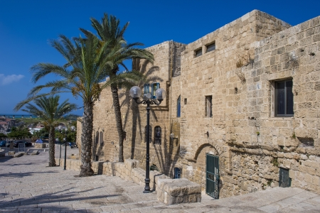 A house and palm trees in historic Jaffa , Israel