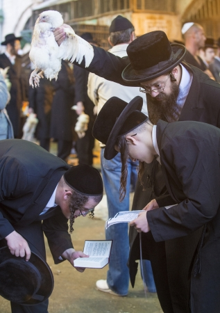 atonement: JERUSALEM - SEP 25 : An ultra Orthodox Jewish men prays with a chicken during the Kaparot ceremony held in Jerusalem Israel in September 25 2012
